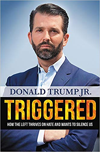 Triggered Book Cover